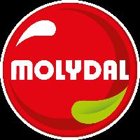 Logo  BGM Molydal